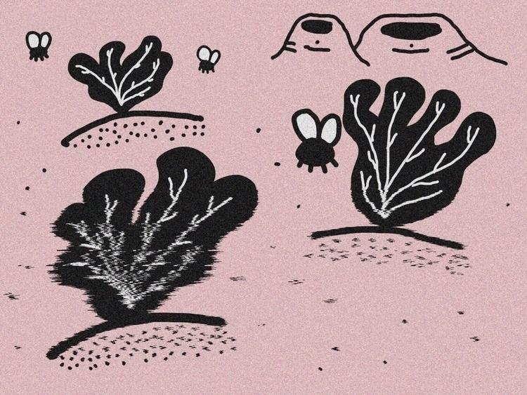 Zakki Valley - warmup, doodle, doodledaypdx - dsmoore | ello