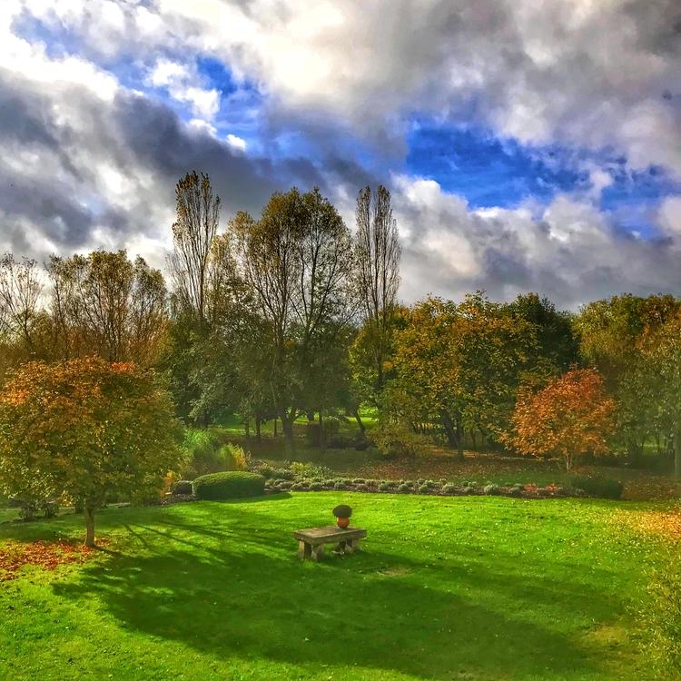 leaves - autumn, afterthesummer - willkreutz | ello