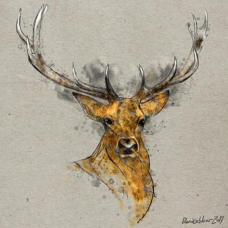 digital deer Title Deer - drawing - lobber66   ello