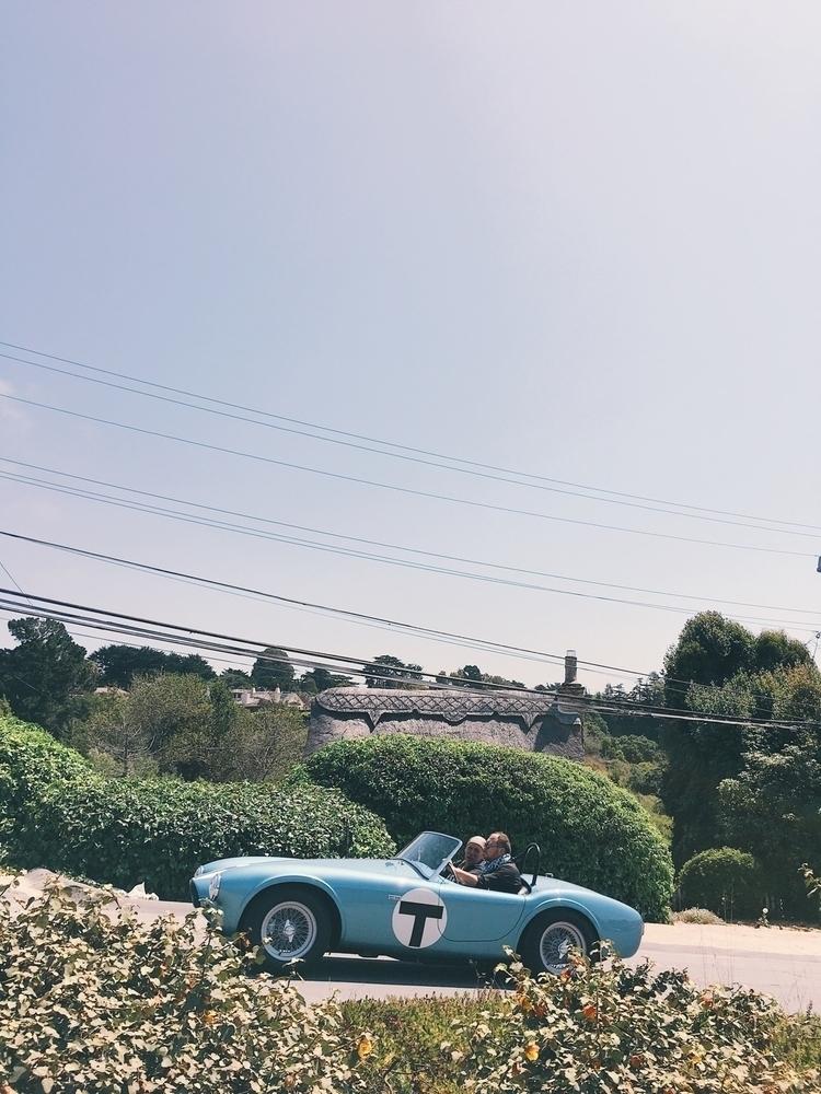 cobra - 1962, shelby, roadster, garageart - tramod | ello