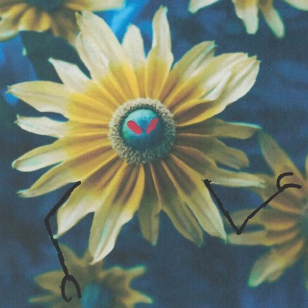 "stupid,"" moaned Flower. asked H - littlefears | ello"