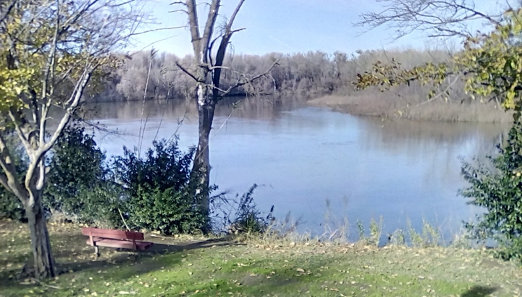 Sacramento River, October 2016  - williamrobertway | ello