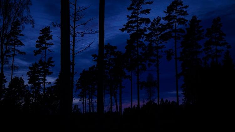 sunset north - maralraham | ello