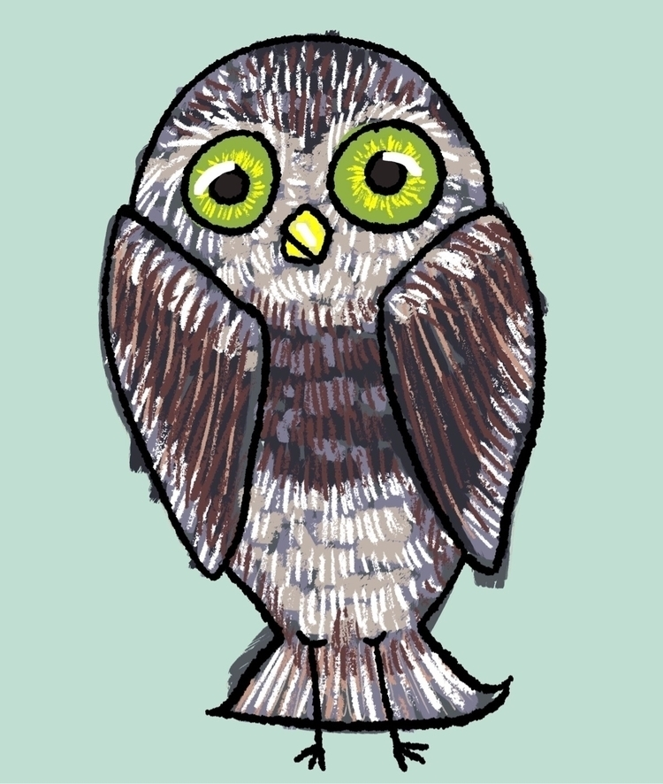 owl, bird, sketch, illustration - reneeleigh | ello