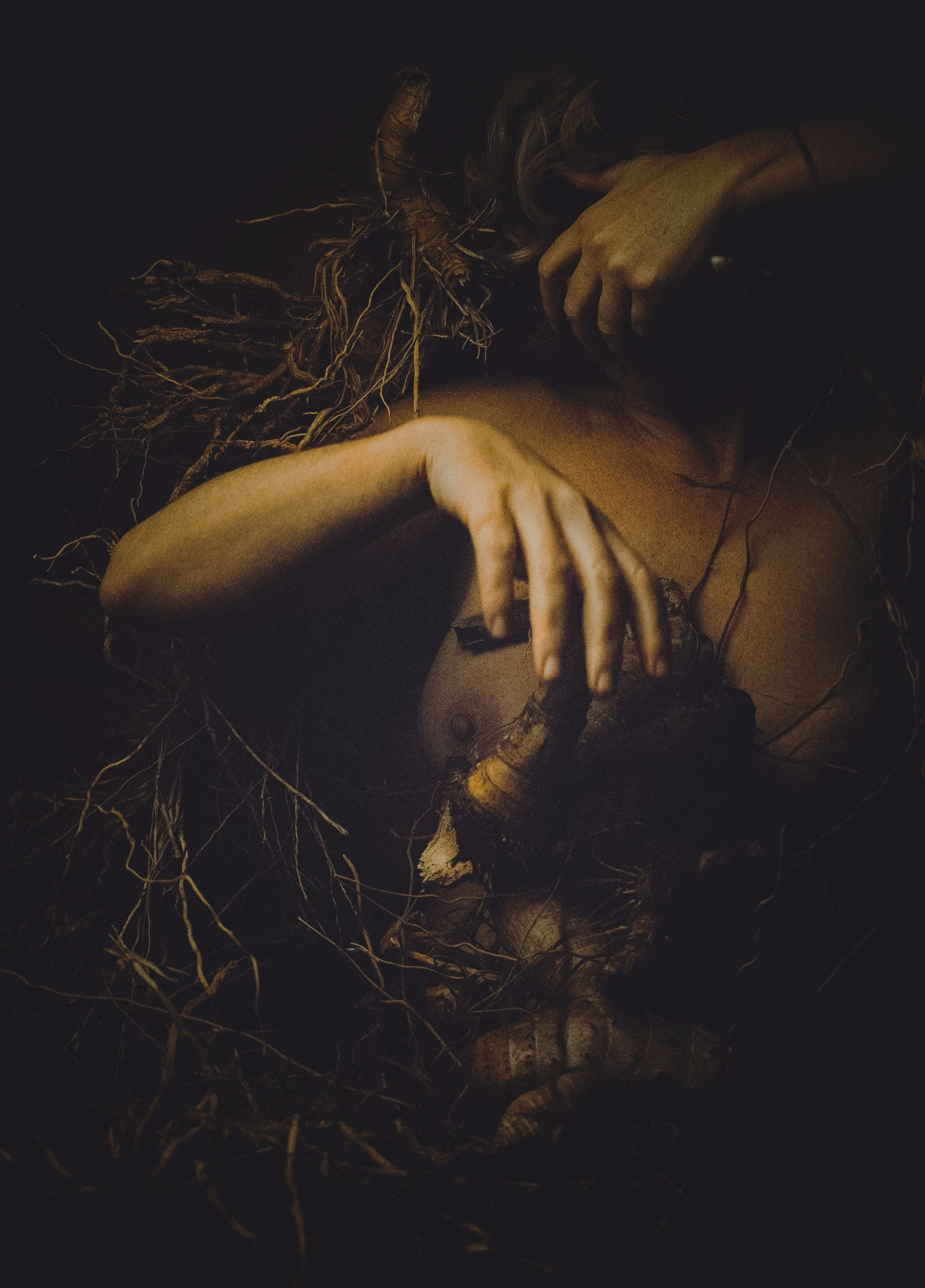 roots - darkness, root, palms, country - natxodiego | ello