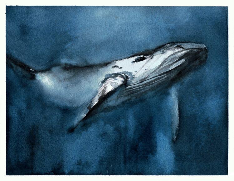whale, sea, watercolor, painting - pretopasin | ello
