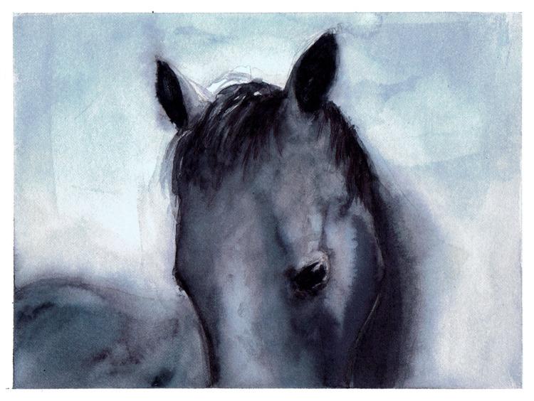 horse, watercolor, painting, portrait - pretopasin | ello