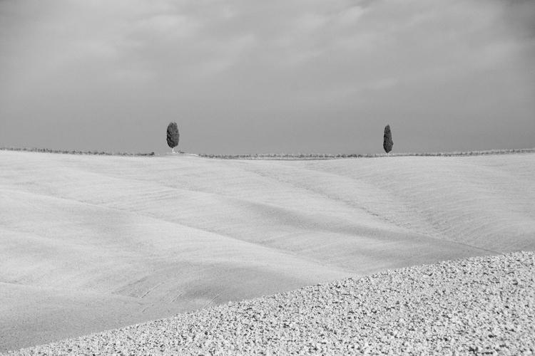 Tuscan Waves - blackandwhite, tuscany - stillnessimages   ello