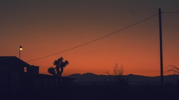 light - joshuatree, minimal, surreal - kylie_hazzard_visuals | ello