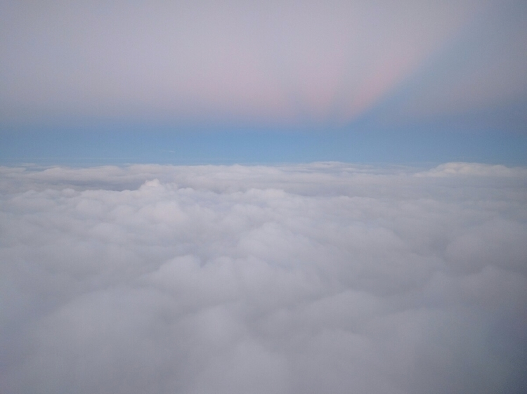 flying today - stevebohlman | ello
