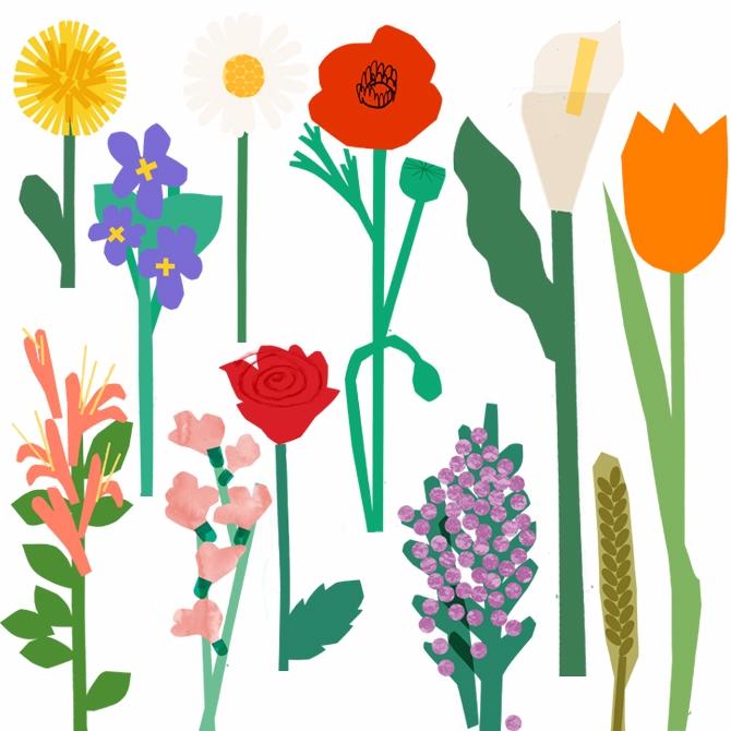 11 flowers issue 9 Scoop Magazi - lizzielomax | ello