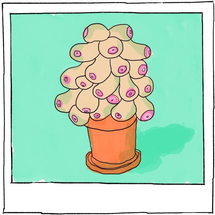 Polaroid - strange plant. Mothe - agency   ello