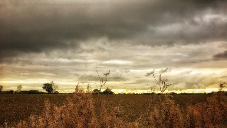 Darkening sky, Norfolk - landscape - davidhawkinsweeks | ello