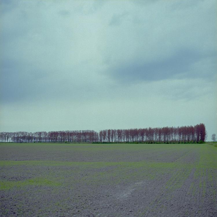 Land-water-trees (spare image - photography - glennvanvredegem | ello