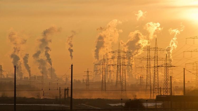 Potencial asesor ambiental de E - codigooculto | ello