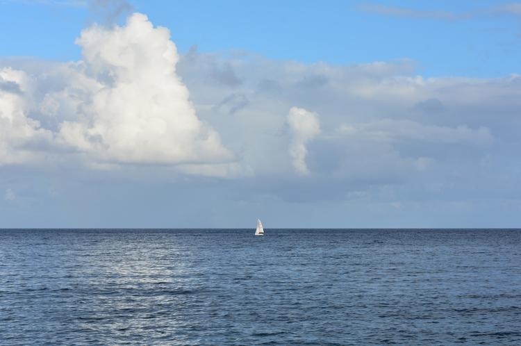 Sailors Madeira - euric | ello