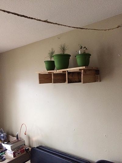 reclaimed pallet-wood plant she - stone_lovecharm | ello