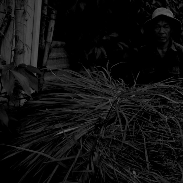 Vietnamese Impressions 1/3 (Aug - sozoeish   ello