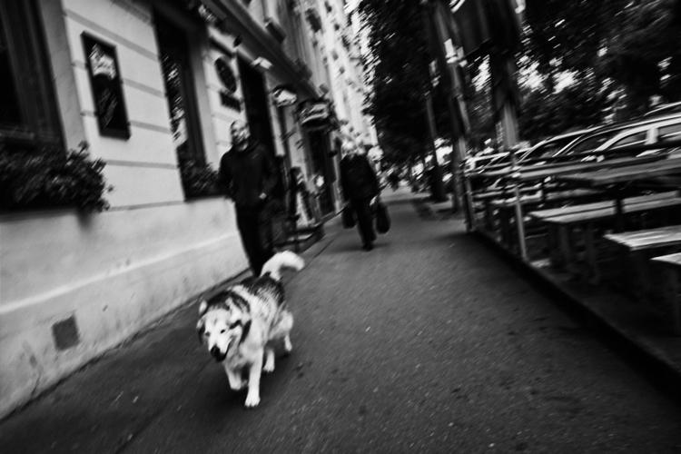 **STREET FOTO PRAGUE** *Sans Ti - michalfanta | ello