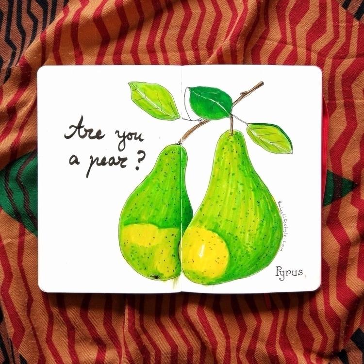 pear? Sketch day 1136 moleskine - bulanlifestyle | ello