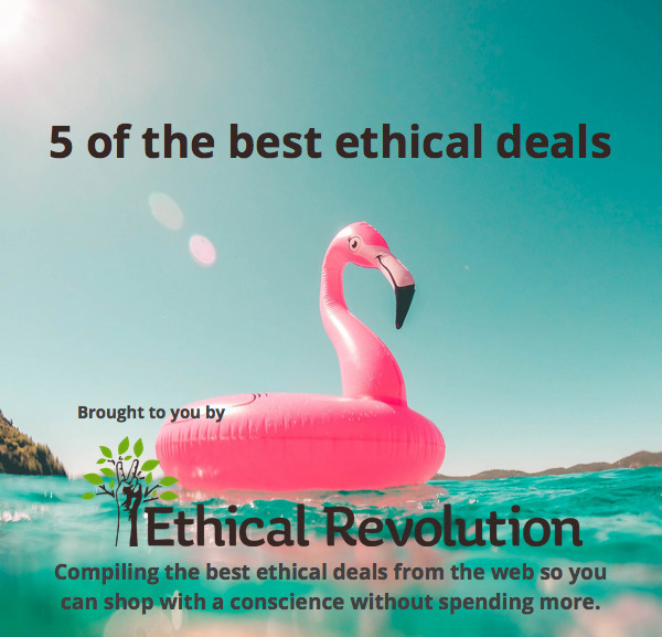 Flamingos Paradise! 5 deals - ethical - ethicalrevolution | ello