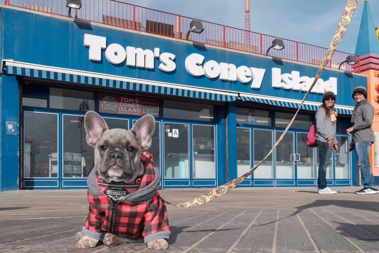 Max Coney Island, NYC - giseleduprez | ello
