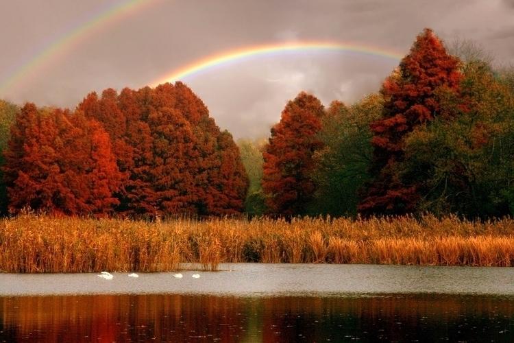 Colorful rainbow pigmenting dyi - gebeleizis | ello