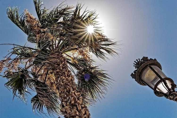 Sitges - Spain - palmtree, beach - stephanepictures | ello