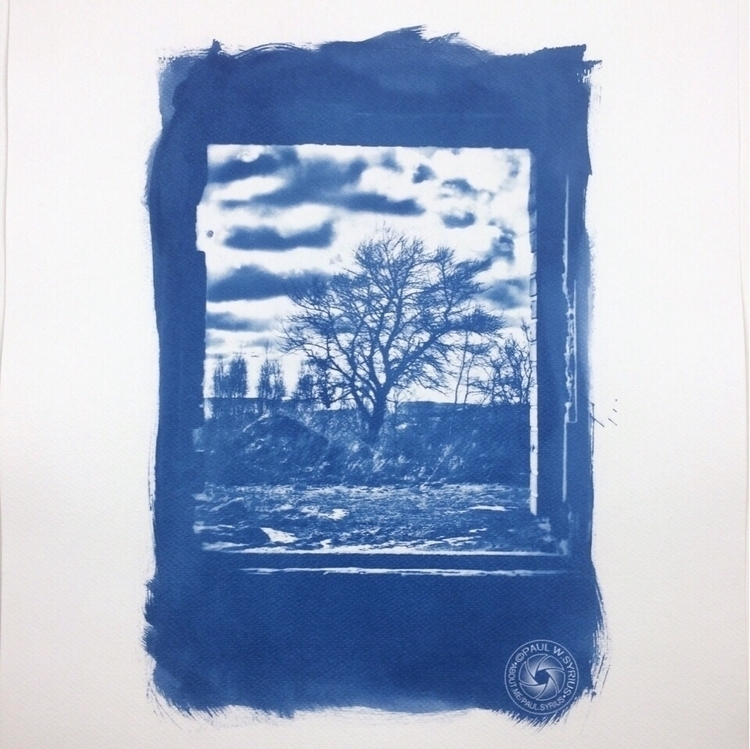 Window. Cyanotype - paulsyrius | ello