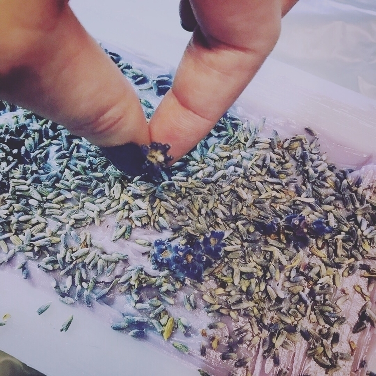 Adding lavender garden - plumeri | ello