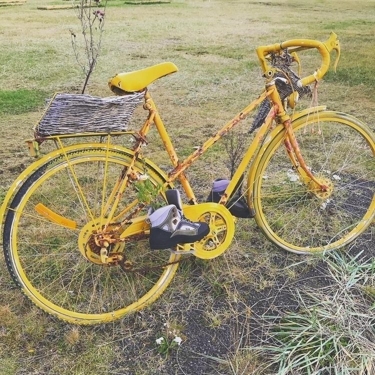 bicycle planter. Hrisey, Icelan - plumeri | ello