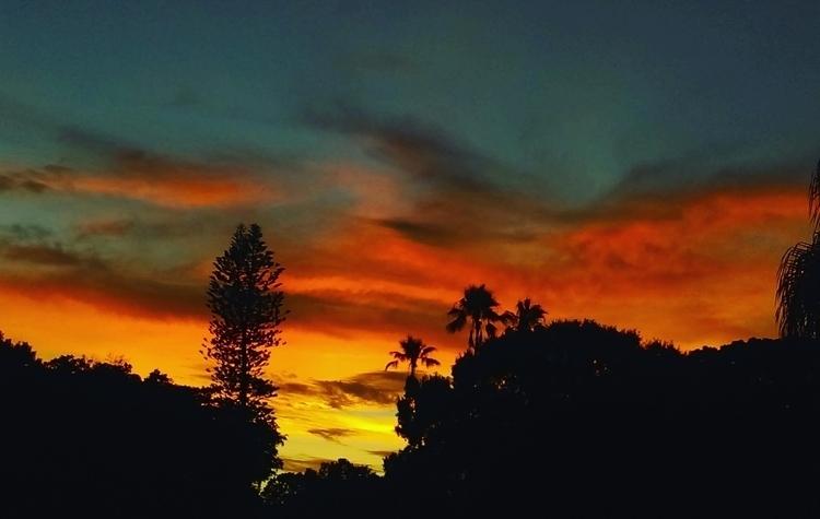 8/3/16 - Sunset, TampaBay, Florida - laurapinto | ello