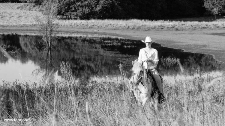 prince charming white horse - equestrian - ck__pilot   ello