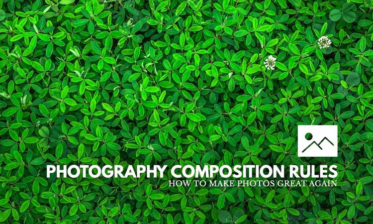 Photography composition element - wxzhuo | ello