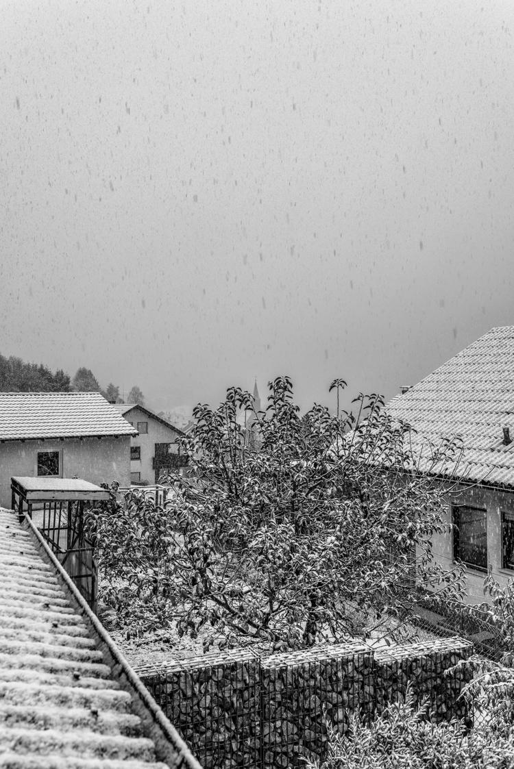 Sunday morning, snow valley - 2017-11-12 - christofkessemeier   ello