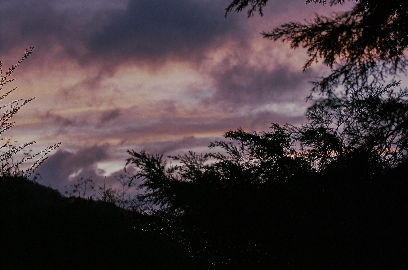 winter, fall, shotonfilm, 35mm - teetonka   ello