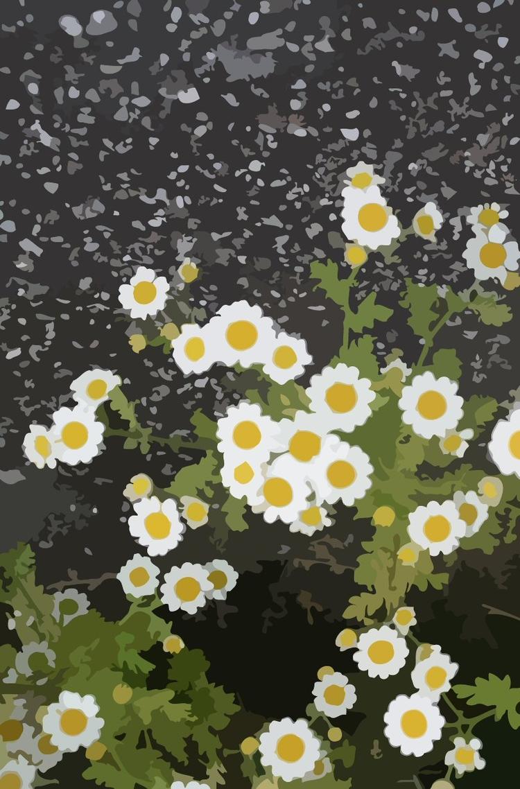 Feverfew Flowers - digitalart, wildflowers - firehorsetextiles | ello