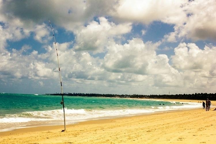 Brazil, beach, portodegalinhas - rapozzo | ello