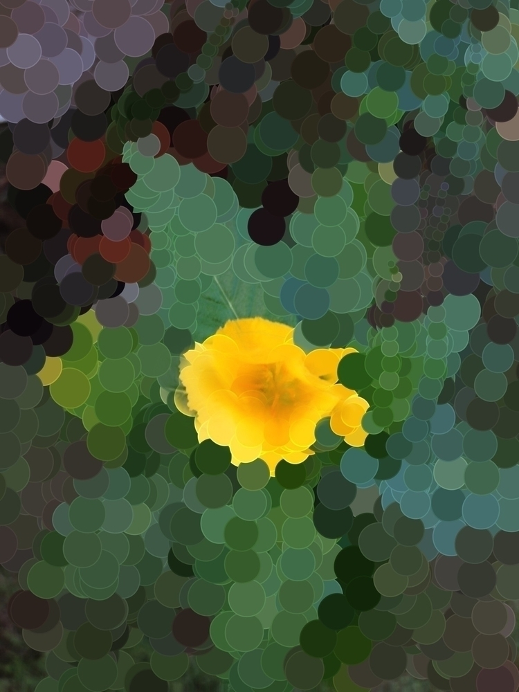 Yellow Flower Future Apps - mikefl99 - mikefl99 | ello