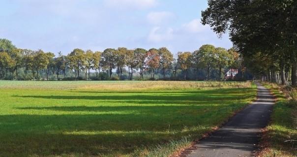 Landvision Advises Landscape Pl - davidharrisofficial | ello
