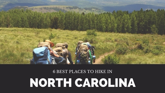hiking, northcarolina, travel - manishadorawala | ello