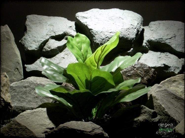 silk reptile terrarium plant: f - ronbeckdesigns | ello