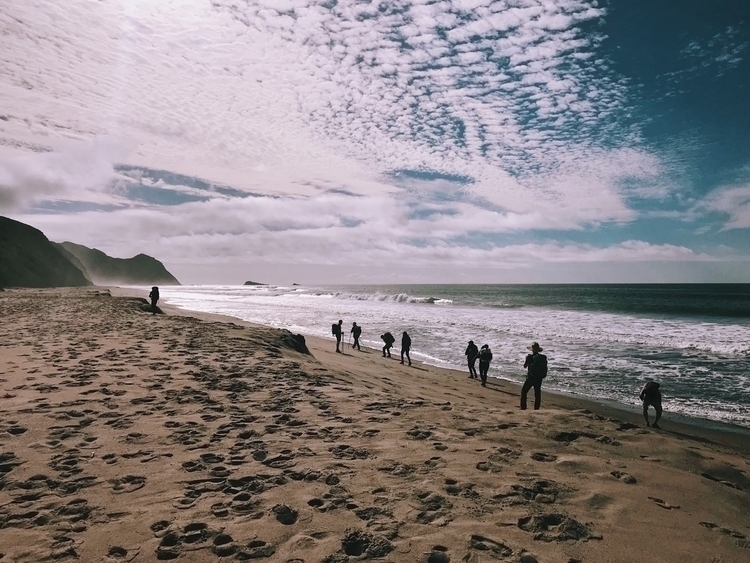 Point Reyes National Seashore,  - rplusg | ello