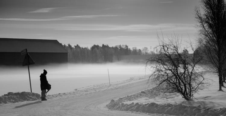 fog, mist, snow, trees, house - niklasborsting | ello
