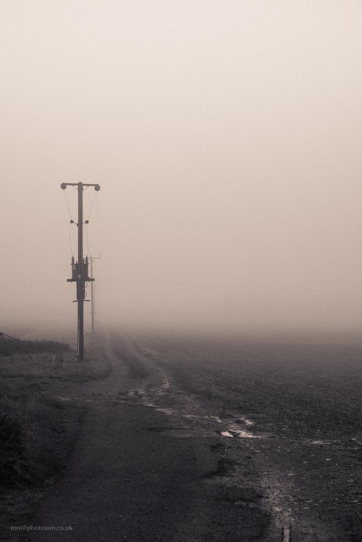 Damp days winter - misty, foggy - toni_ertl | ello