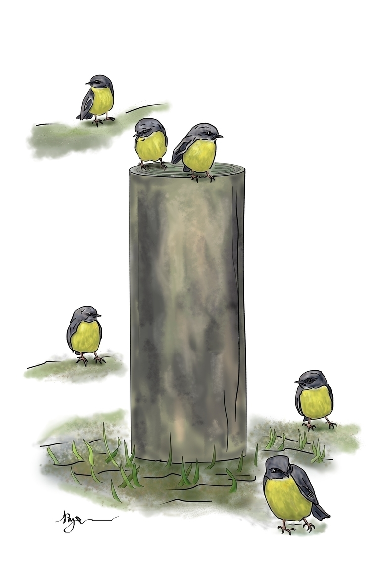 Eastern Yellow Robins - illustration - rachelj-1394 | ello