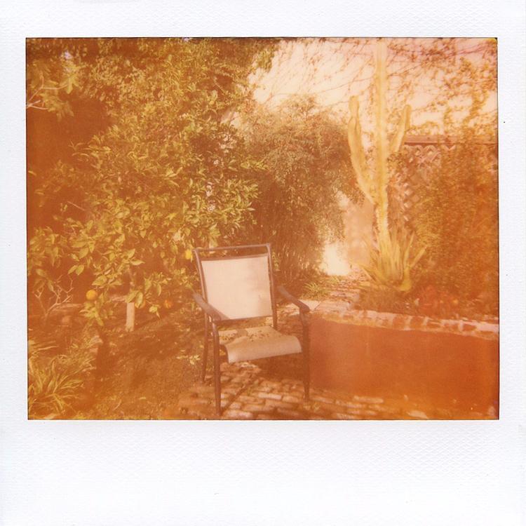 593 - polaroid - michaelphillips | ello
