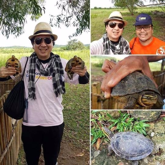 Playing Wild - Turtle, CalauitWildlifeSafari - vicsimon | ello