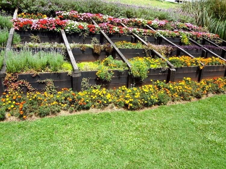 Floreira Parque Amantikir em Ca - antoniomg | ello