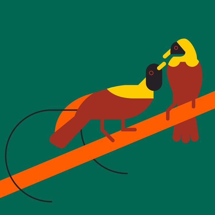 2018 Animals Calendar - illustration - bentheillustrator | ello